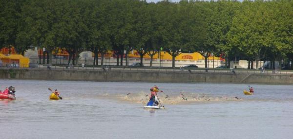 natation bordeaux