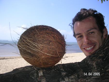 Hawaii coco