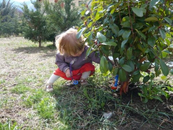 Aide jardinier !