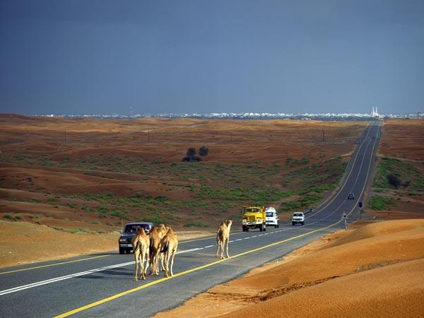 freshwater-abu-dhabi-seeding-rain-desert_31040_600x450.jpg