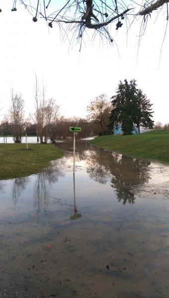 La Saone a inondée le parcours PAPA.jpg