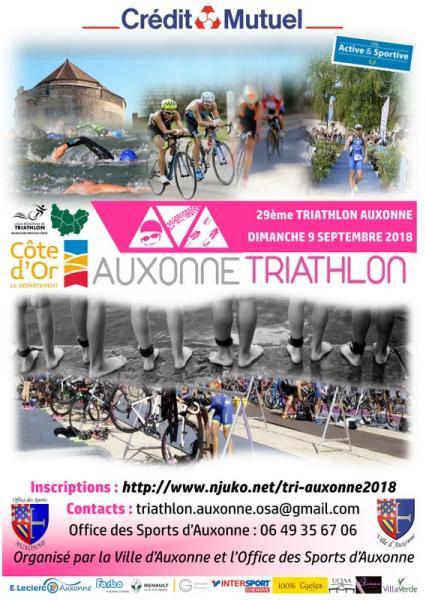 Triathlon Auxonne.jpg