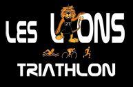 LES LIONS.jpg