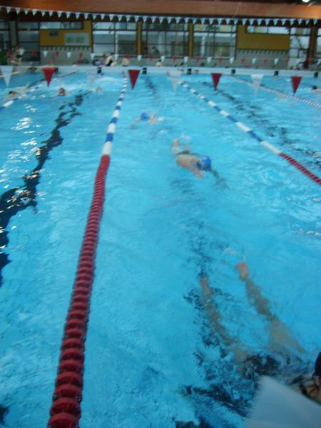 la piscine de roanne