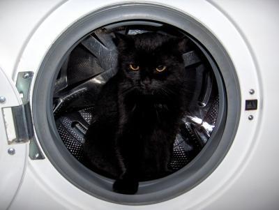 machine à laver les mauvais nageurs.jpg