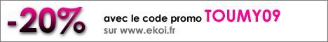 code promo ekoi.jpg